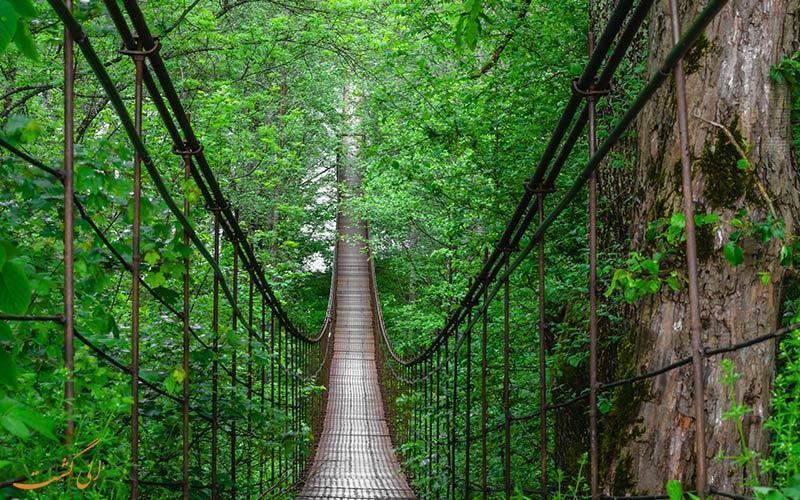 با عبور از پل معلق کاپیلانو در کانادا اوج هیجان را تجربه کنید!