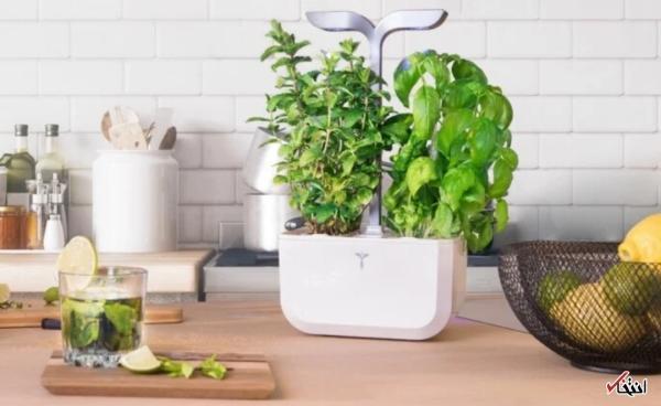 طرح باغ ویلا: باغچه هوشمند با نور LED اتوماتیک